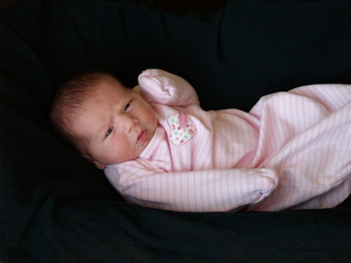 Lily10days2